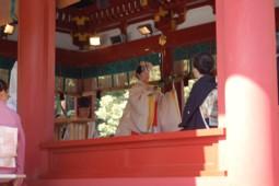 鎌倉鶴岡八幡宮での結婚式の写真。